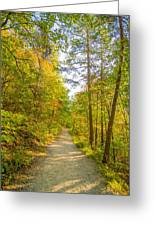 Beautiful Autumn Forest Mountain Stair Path At Sunset Greeting Card