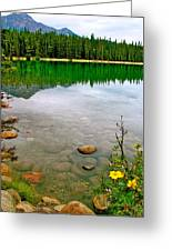 Beauvert Lake In Jasper National Park-alberta-canada Greeting Card