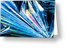 Benzoic Acid Crystals In Polarized Light Greeting Card