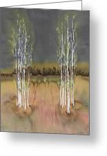 2 Birch Groves Greeting Card by Carolyn Doe