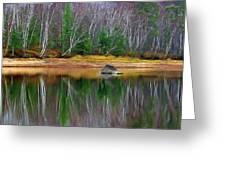 Birch Shoreline Greeting Card