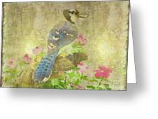 Blue Jay With Texture Greeting Card