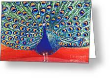 Blue Peacock Greeting Card