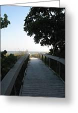 Boardwalk To The Beach Greeting Card