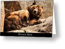 Brown Bear Greeting Card by Chris Flees