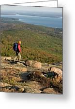 Cadillac Mountain, Acadia National Park Greeting Card