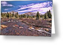 Canadian Rockies Stream Greeting Card