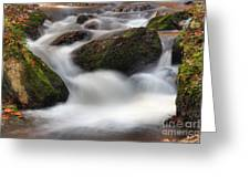 Cataracts Greeting Card
