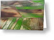 Cereal Fields From The Air Greeting Card