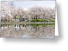 Cherry Blossoms In Tokyo Greeting Card