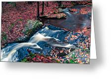 Chesterfield Gorge New Hampshire Greeting Card
