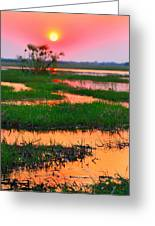 Chobe River Sunset Greeting Card