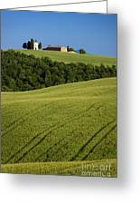 Church In The Field Greeting Card