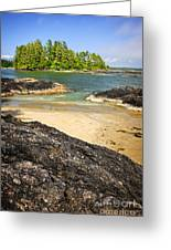 Coast Of Pacific Ocean On Vancouver Island Greeting Card