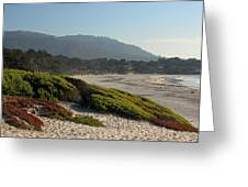 Coastal View - Ice Plant  Greeting Card