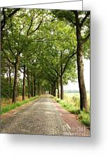Cobblestone Country Road Greeting Card by Carol Groenen