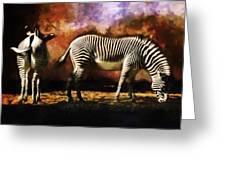 Creation Zebra Greeting Card