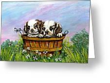 Curious Little Buddies.  Greeting Card