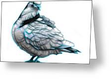Cyan Pigeon Pop Art 5516 - Fs - Bb -  Modern Animal Artist James Greeting Card