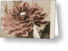 Dahlia Named Caproz Jerry Garcia Greeting Card