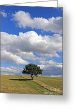 Dramatic Clouds And The Tree Greeting Card