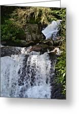 Dukes Creek Falls Greeting Card