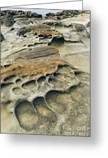 Eroded Sandstone Cliff Along The Ocean Greeting Card