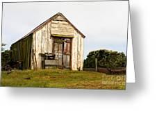 Falkland Island Farm Greeting Card