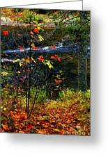 Fall Forest And River Greeting Card