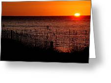 Fence And The Sun Greeting Card