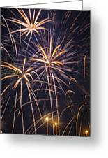 Fireworks Celebration  Greeting Card by Garry Gay