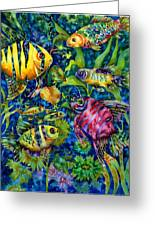 Fish Tales IIi Greeting Card by Ann  Nicholson