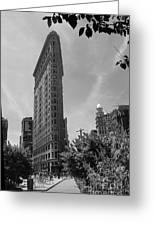 Flatiron Building Manhattan  Greeting Card