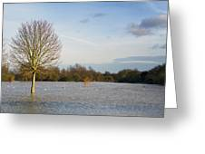 Flooded Field In Rural Essex Greeting Card