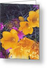 Floral Wonder Greeting Card