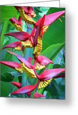 Flower 99 Greeting Card