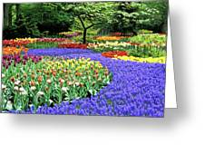 Flowers At A Garden Greeting Card