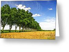 French Country Road Greeting Card