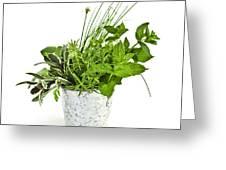 Fresh Herbs Greeting Card by Elena Elisseeva