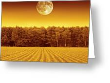 Full Moon Over A Field Greeting Card