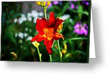 Garden Beauty Greeting Card