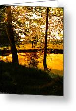 Golden Pond 3 Greeting Card