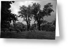 Graveyard 1 Greeting Card