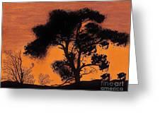 Gray Sky Sunset Greeting Card