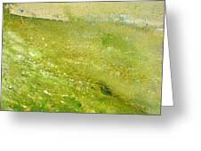 Green Field  Greeting Card by Tanya Byrd