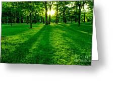 Green Park Greeting Card