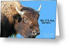 Herd Its Your Birthday Greeting Card