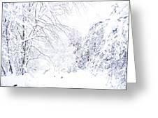 Hurricane Sandy Snow  Greeting Card