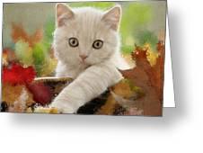 I Love Kittens Greeting Card