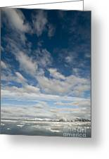 Ice Floes, Spitsbergen Greeting Card